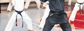 doru botez, arte martiale., scm bacau